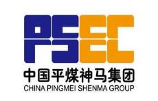 中国pingmei神马集团电jia热蒸汽发生器厂家案例